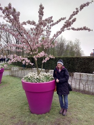 Small person under a cherry tree Keukenhof 2018