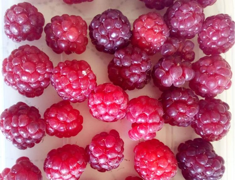 September raspberries