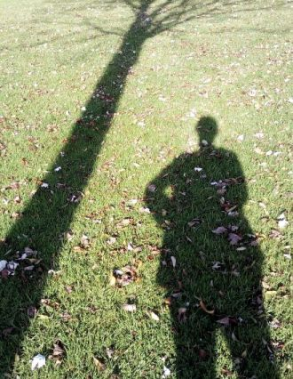 Long shadows mid-afternoon are a feature of October sunshine in the Northern Hemisphere