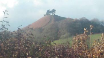 Colmer's Hill November