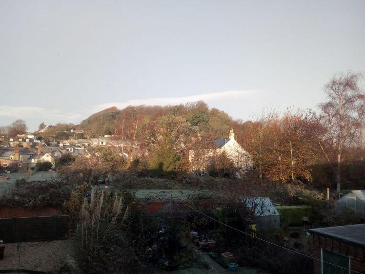 View of Allington Hill 14 November 2019 sunshine and fox