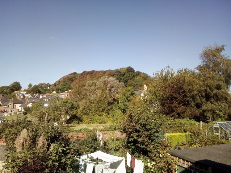 View of Allington Hill 14 September 2019