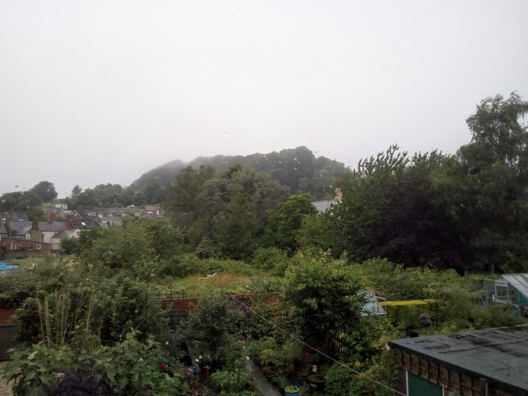 View of Allington Hill 19 July 2019
