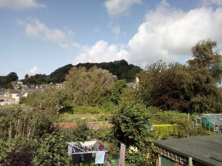 View of Allington Hill 20 August 2019