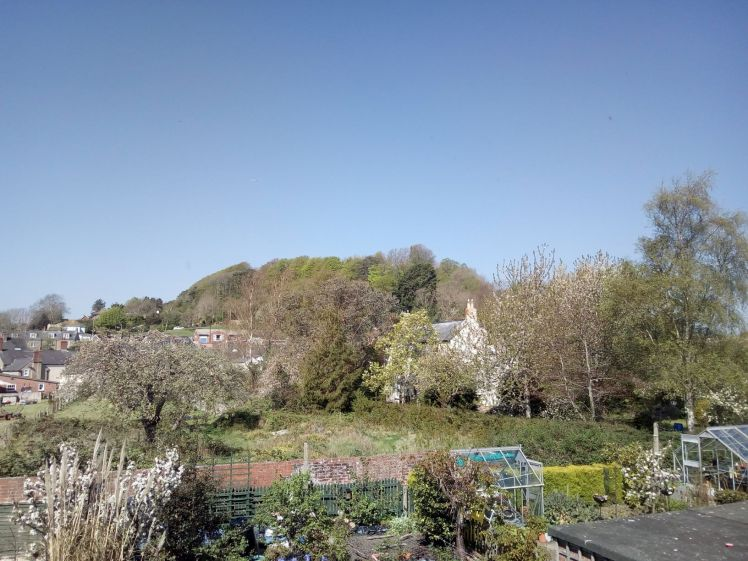 View of Allington Hill 21 April 2019