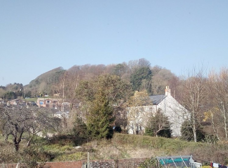 A view of Allington Hill 27 February 2019