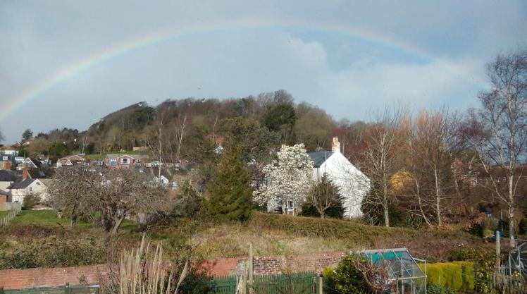 13 March 2019 Rainbow and Magnolia