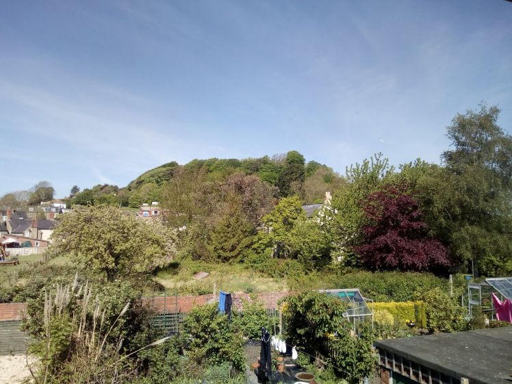 View of Allington Hill 13 May 2019