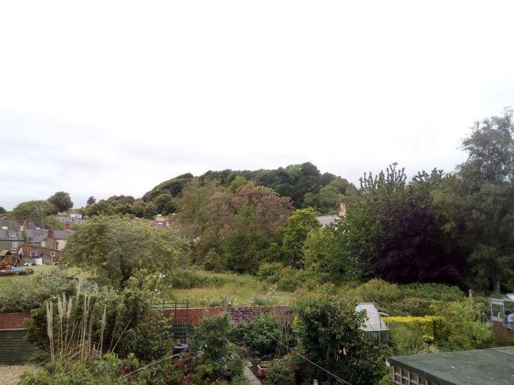 View of Allington Hill 11 June 2019