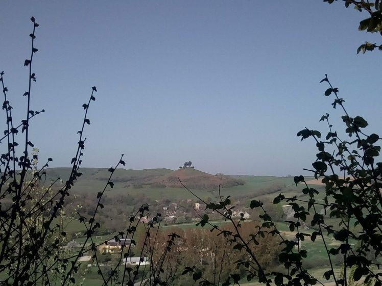 Blue sky and Colmer's Hill